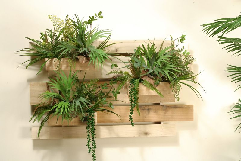 Slatted Wooden Wall Section With Aloe And Assorted Succulents In
