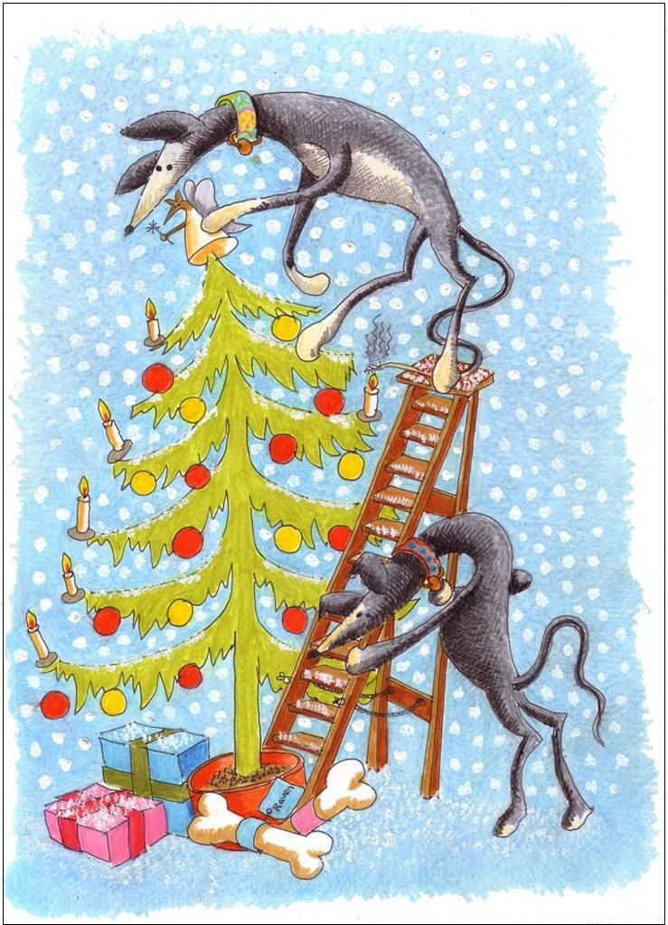 Greyhound Christmas Cards by Nigel Royall for Action for