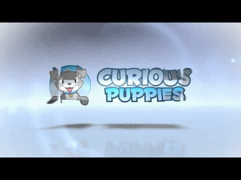Curious Puppies - Our New Logo!!