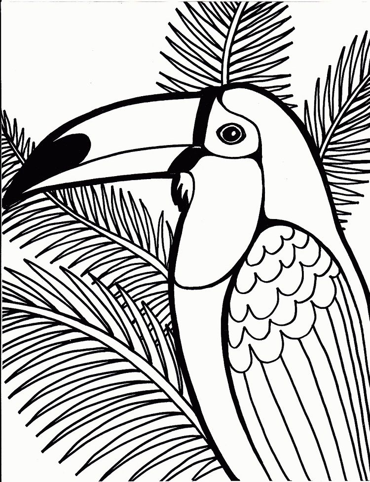 Tropical Bird Coloring Page Bird Coloring Pages Jungle Coloring