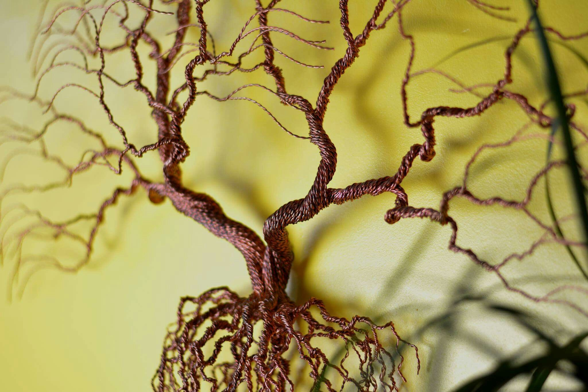Tree Of Life - Bonsiree - Pinterest