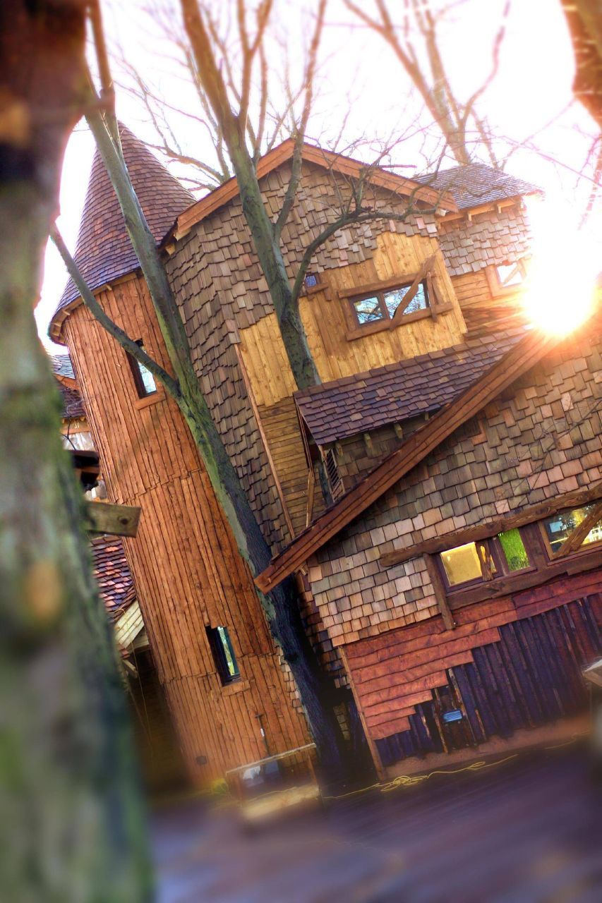 Treehouse Tree house, Alnwick, Alnwick treehouse