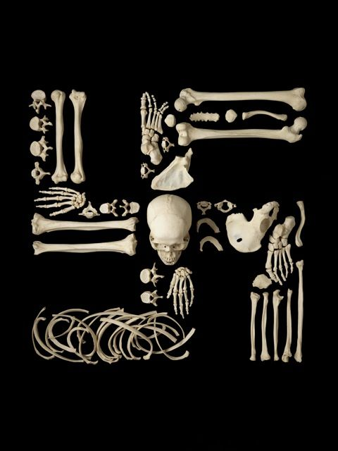 Sinister Symbols Shaped Out of Human Bones