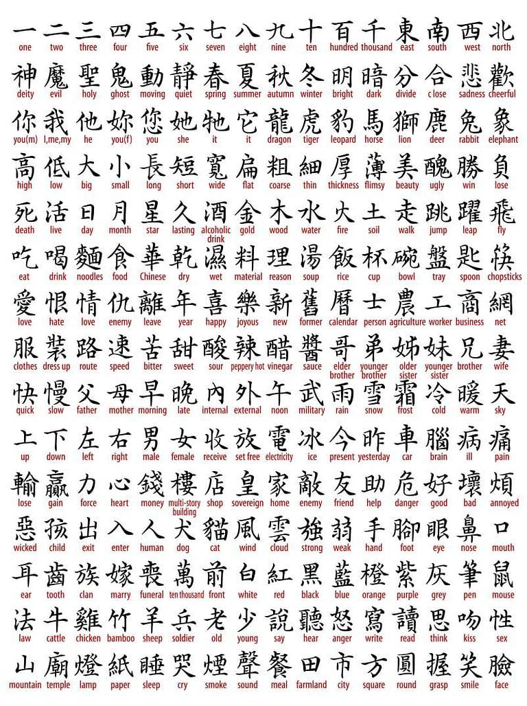Pin By Jaiden Feeheley On Beauty In 2020 Chinese Symbol Tattoos Chinese Symbols Chinese Writing
