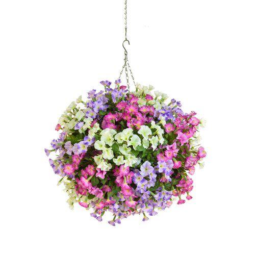 The Seasonal Aisle Mixed Petunia Hanging Flowering Plant In Basket