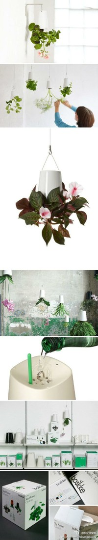diy h ngende pflanzen verkehrte welt wohnung decor diy ideen pinterest green houses. Black Bedroom Furniture Sets. Home Design Ideas