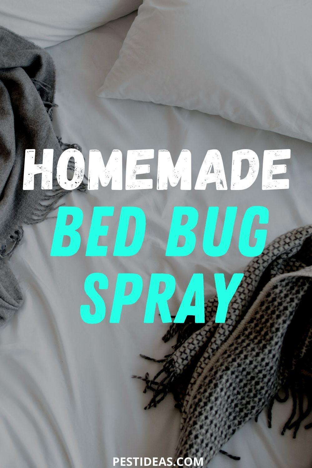 Easy homemade bed bug spray rid of bed bugs bed bug