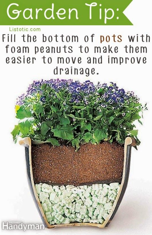 20-Insanely-Clever-Gardening-Tips-And-Ideas1.jpg (531×818)