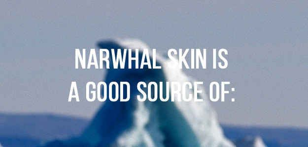 How Well Do You Know Narwhals?