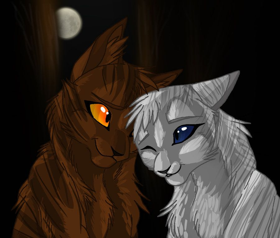 WarriorsWarrior Cats Ivypool And Breezepelt