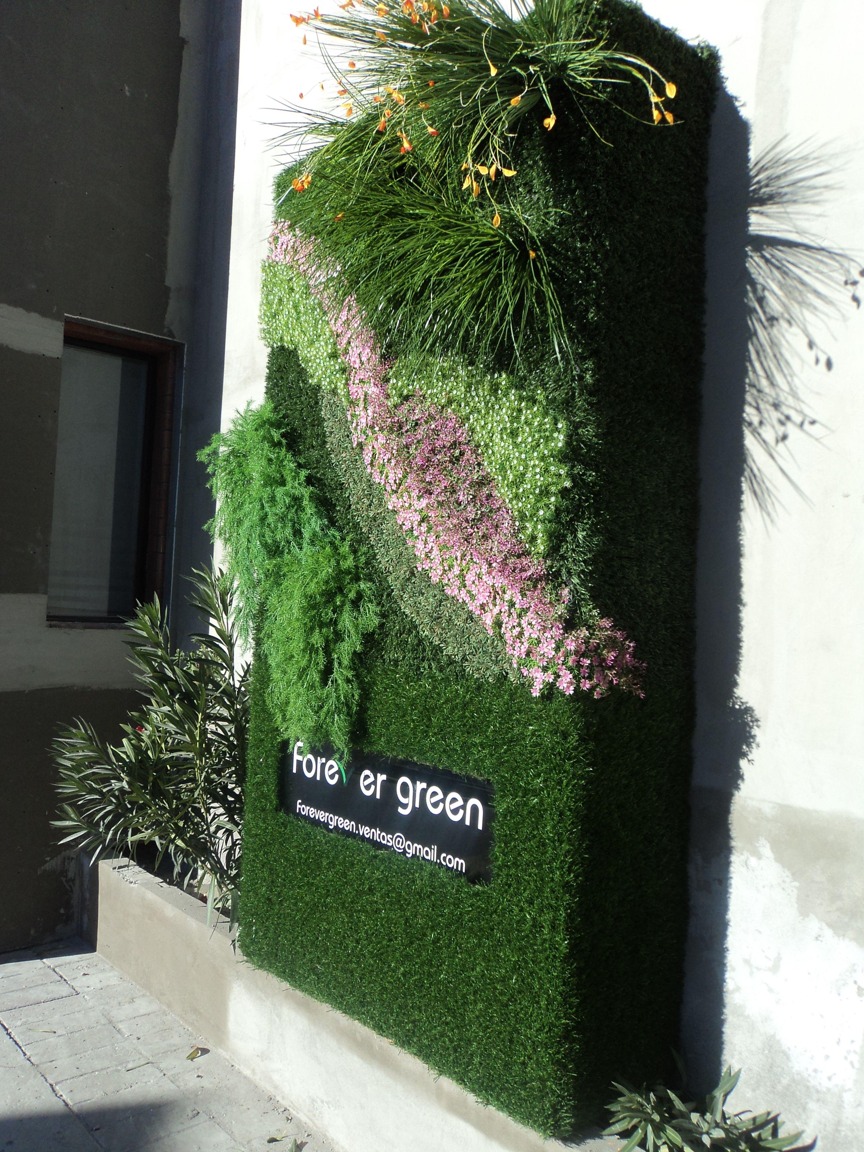 Primera Muestra De Muro Verde Sintetico En Cd Juarez