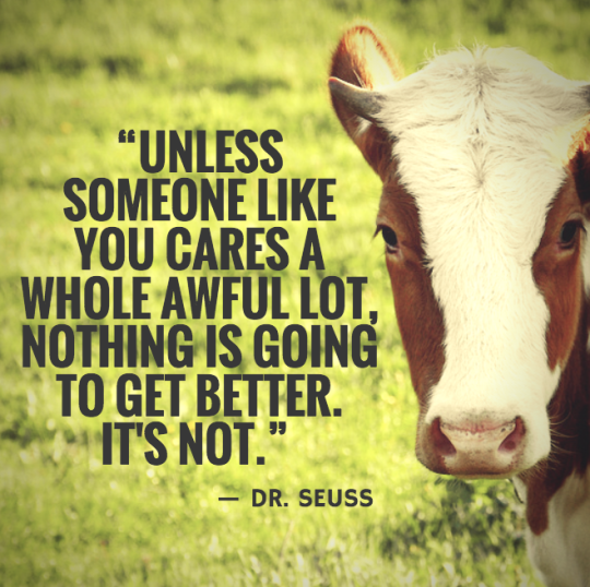 Be the change you wish to see in the world. Go vegan!