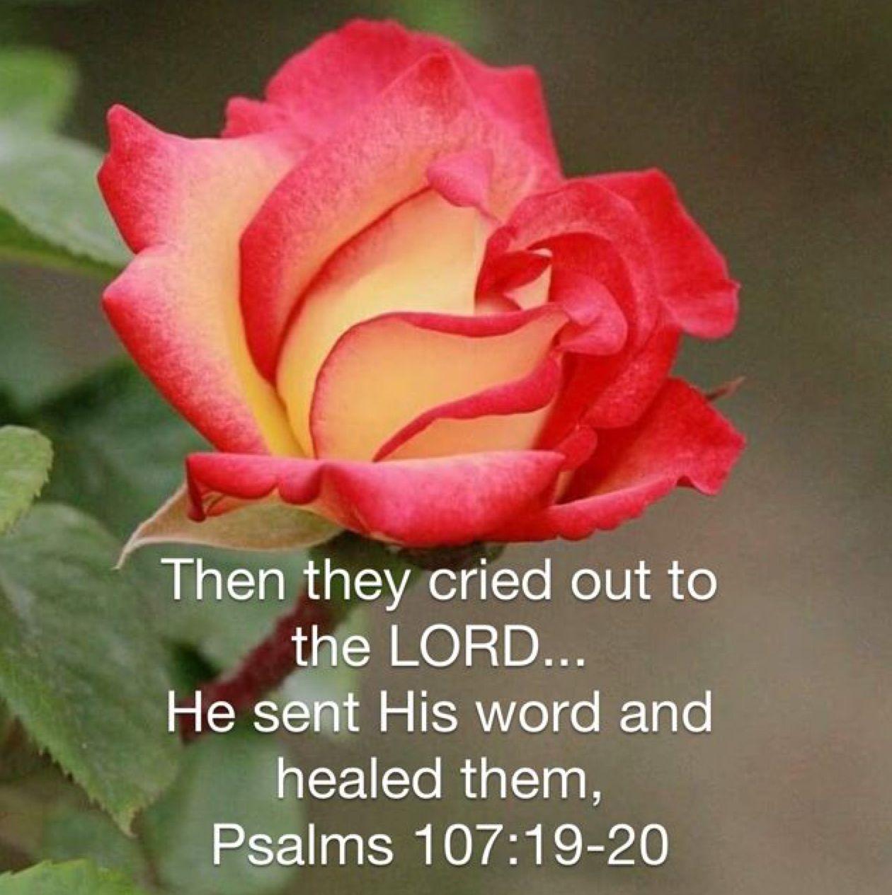 Psalm 107:19-20 | Life/Faith | Healing scriptures, Psalms