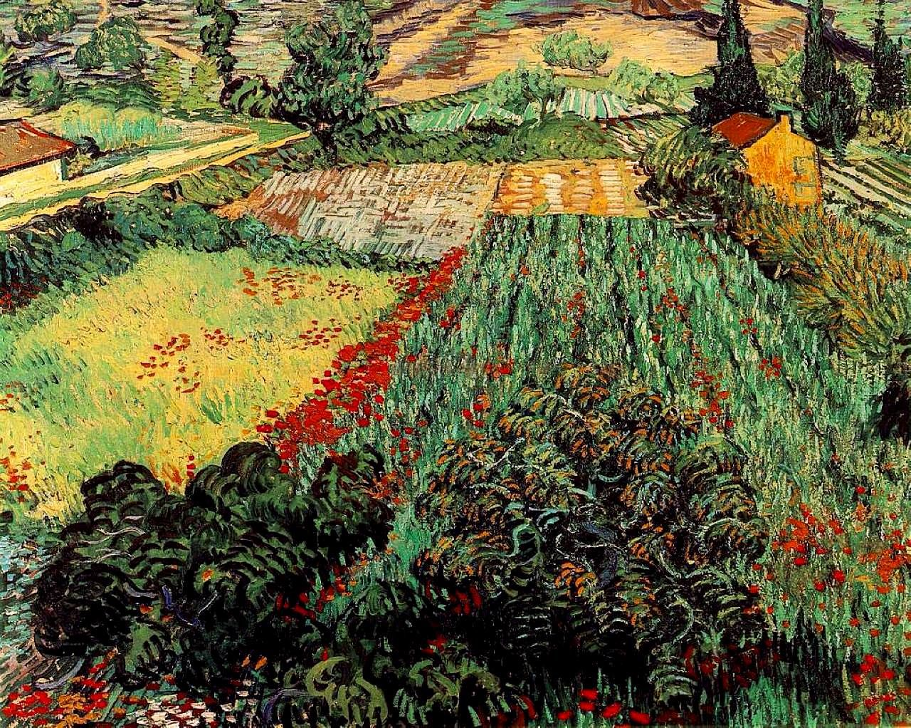 Field With Poppies 1889 Vincent Van Gogh Vincent Van Gogh Paintings Van Gogh Art Vincent Van Gogh Art
