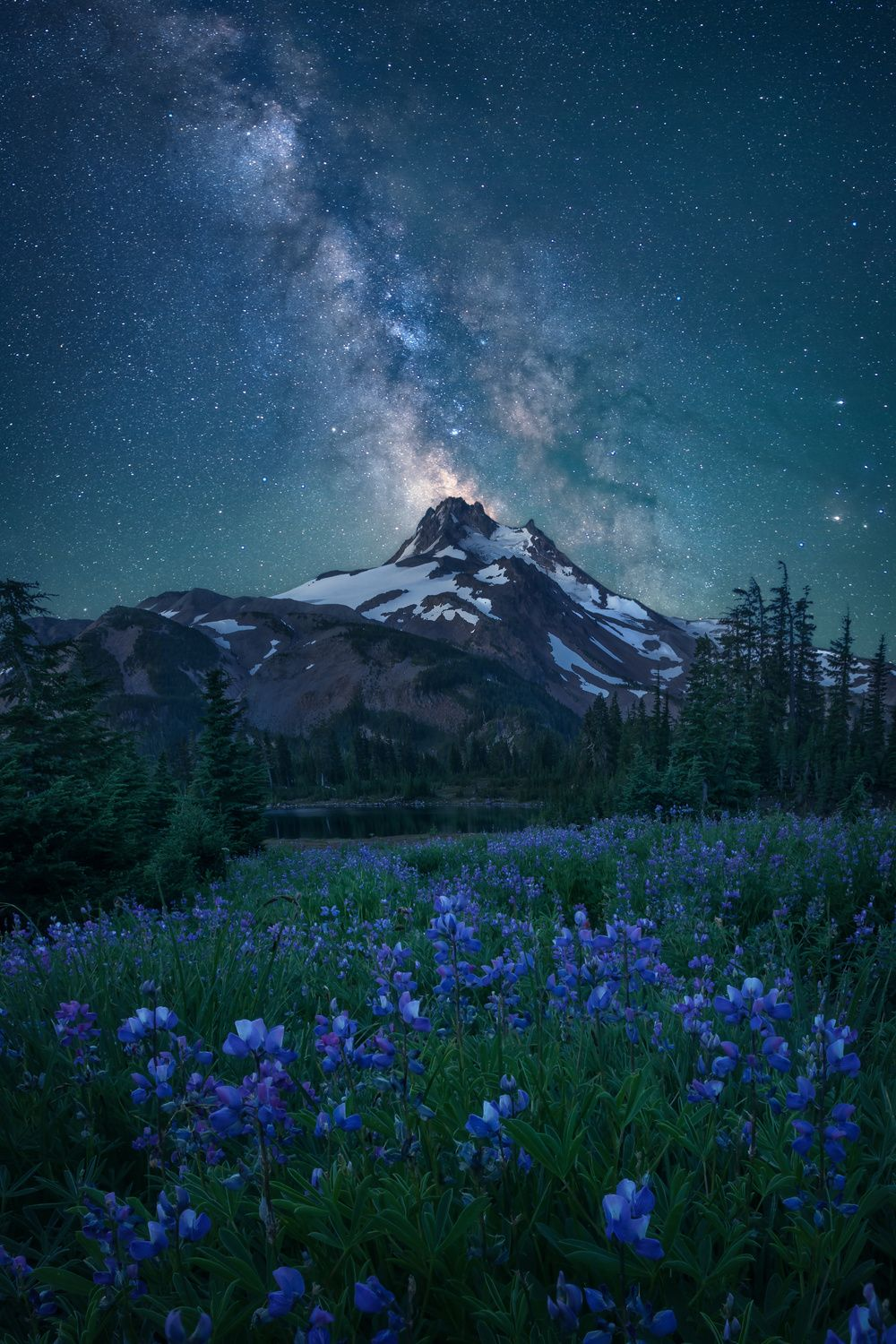 1x.com is the world's biggest curated photo gallery online. Each photo is selected by professional curators. Milky Way Above Mt. Jefferson by Steve Schwindt