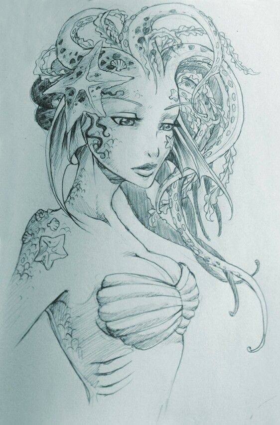 mermaid-beautiful cephalopods