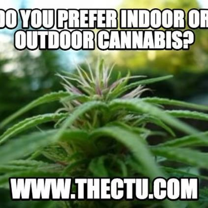 Last chance to save big! Enroll now and get certified as a #cannabis ...