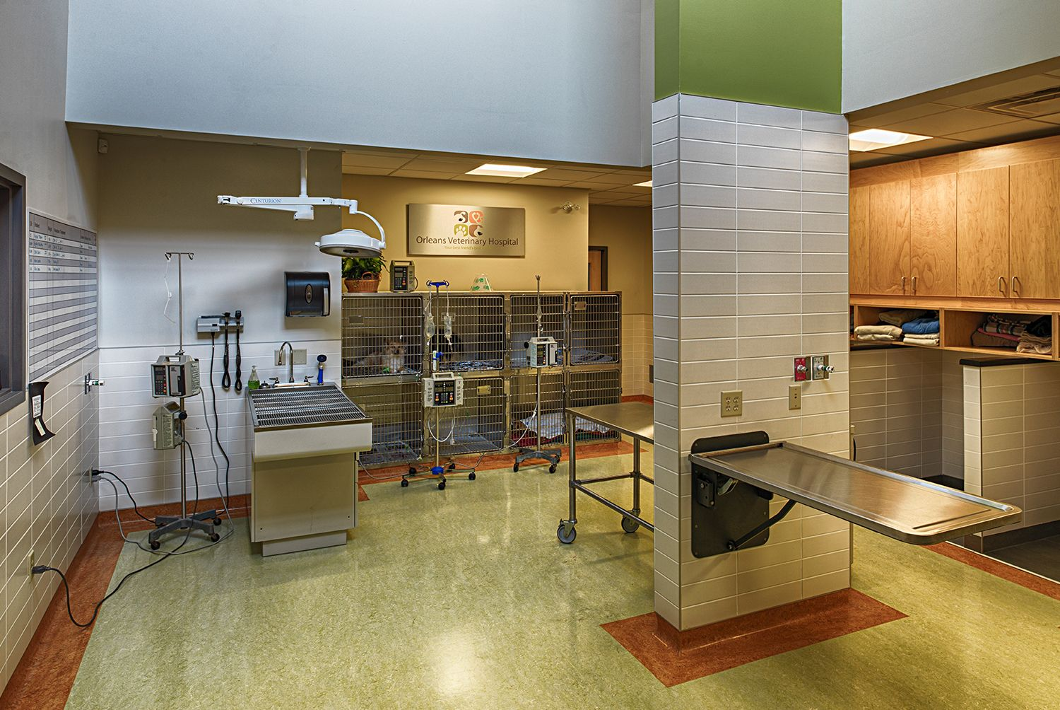 Orleans Veterinary Hospital Dreessen Cardinal Architects Inc Veterinary Hospital Hospital Design Veterinary
