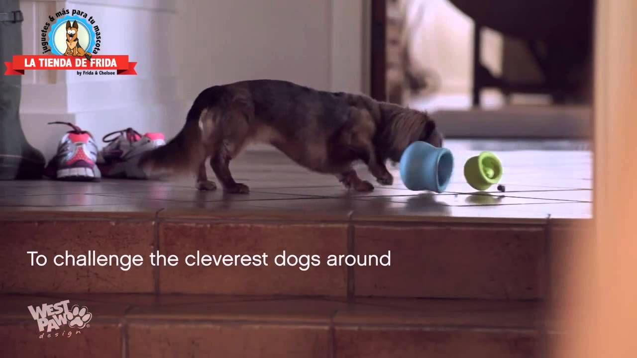 VIDEO: Juguete para Perro Toppl Treat Toy de West Paw Design