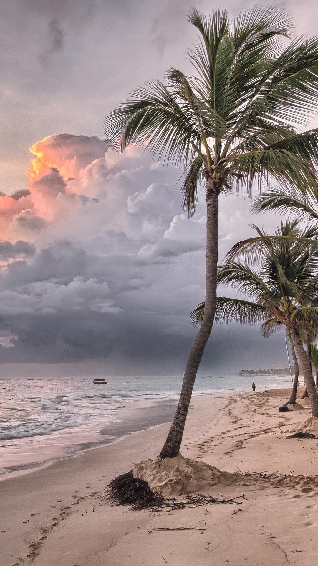 50 Beautiful Beach Wallpaper Phone Backgrounds Hd For Free Download Beach Wallpaper Beach Phone Wallpaper Tropical Paradise Beach