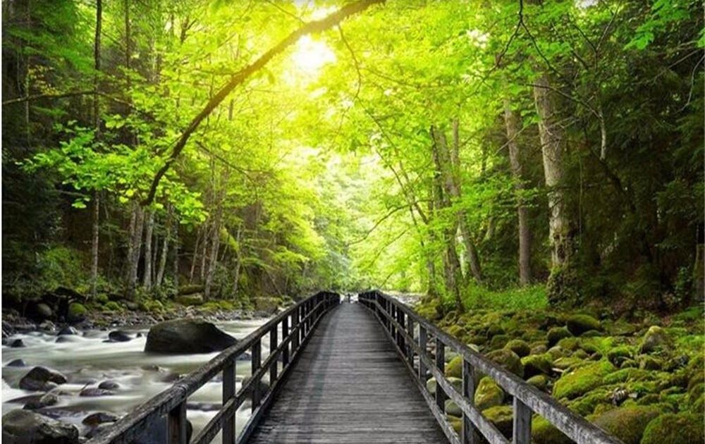 28 Foto Pemandangan Hutan Hd Us 8 85 41 Off Beibehang 3d Besar Dinding Mural Wallpaper Hd Yang Indah Jembatan Kayu Creek Pe Di 2020 Pemandangan Gambar Latar Belakang