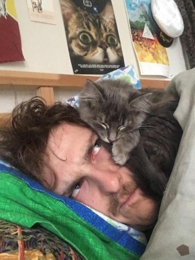Du sitzt zu Hause und hast Langeweile? Dann solltest du dir überlegen, ob du dir nicht vielleicht eine Katze bei dir einziehen lässt. Denn wie diese 15...