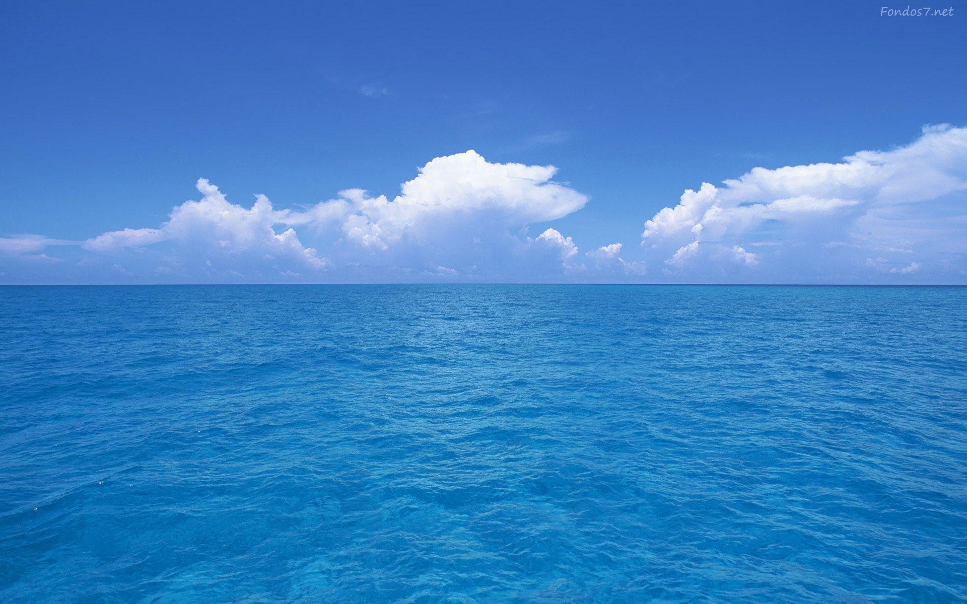 freedom | life's a beach! | pinterest