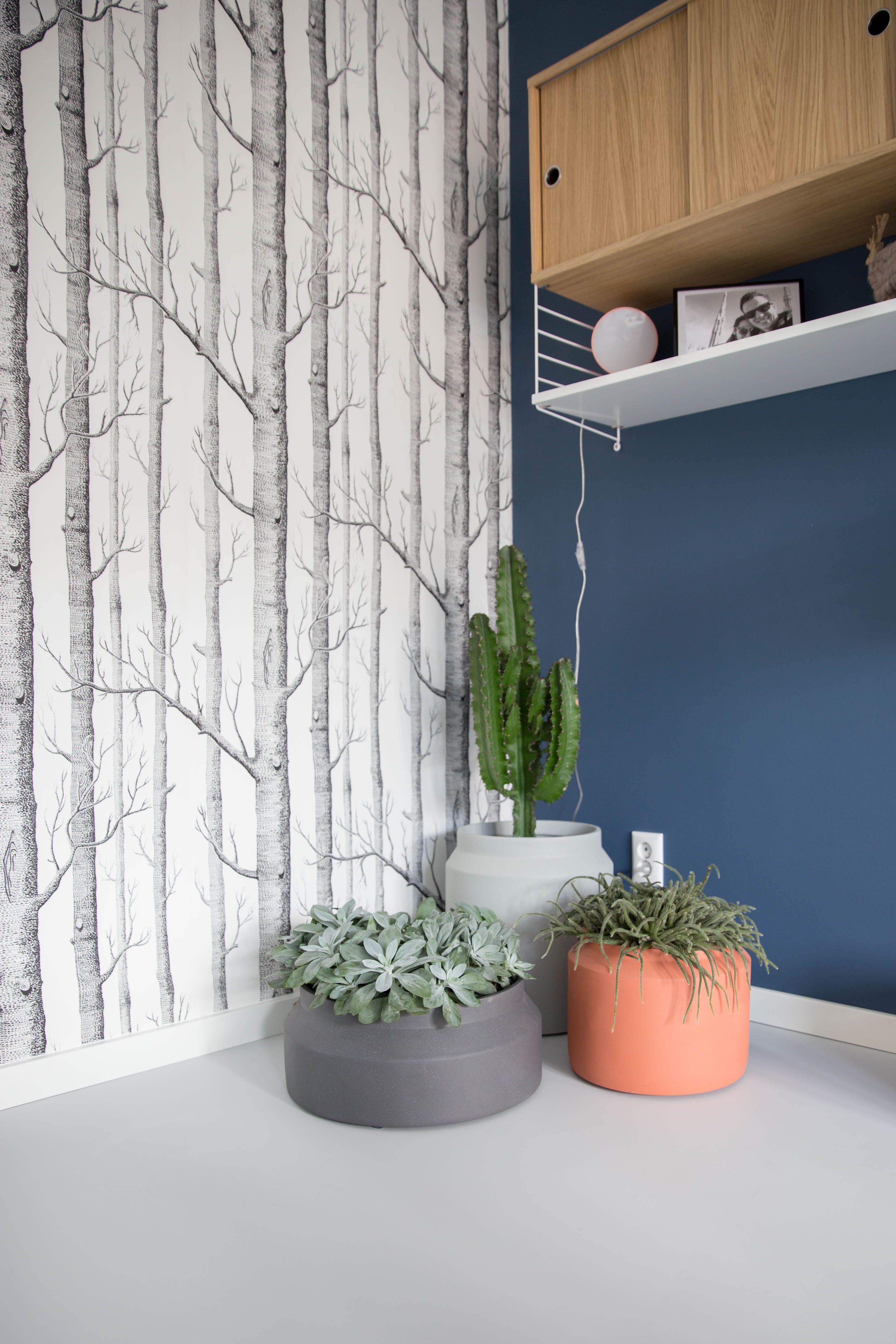 868 336 Exterior Home Design Ideas Remodel Pictures: Femkeido Projects: Nieuwbouw Zoetermeer #Rugs&Flooring