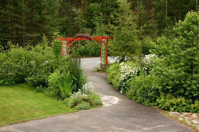 Koivuharjun puutarhasta kuvattua ja kuvailtua