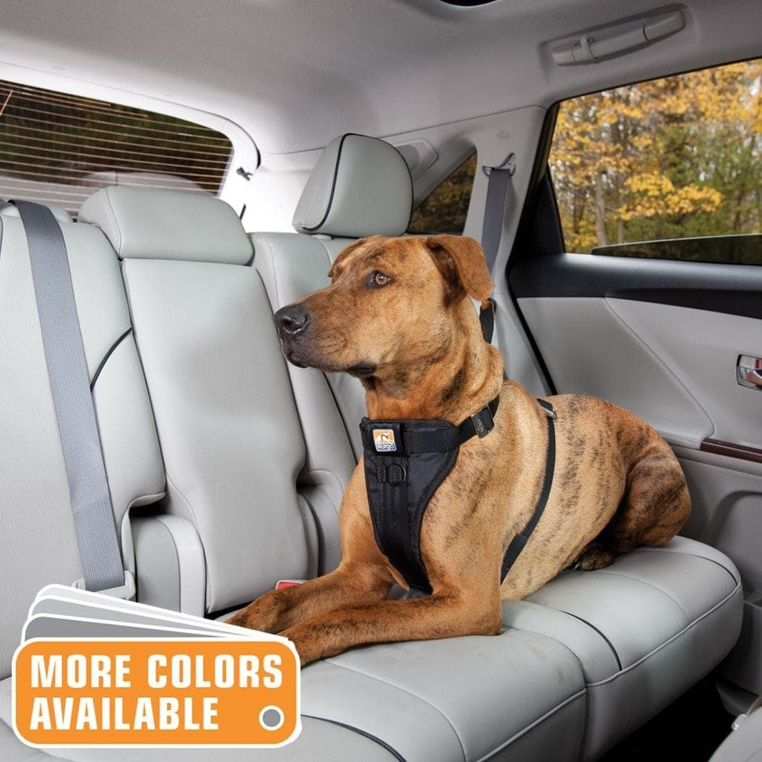Buy Ezydog Drive Dog Car Harness Small At Chewy Com Free