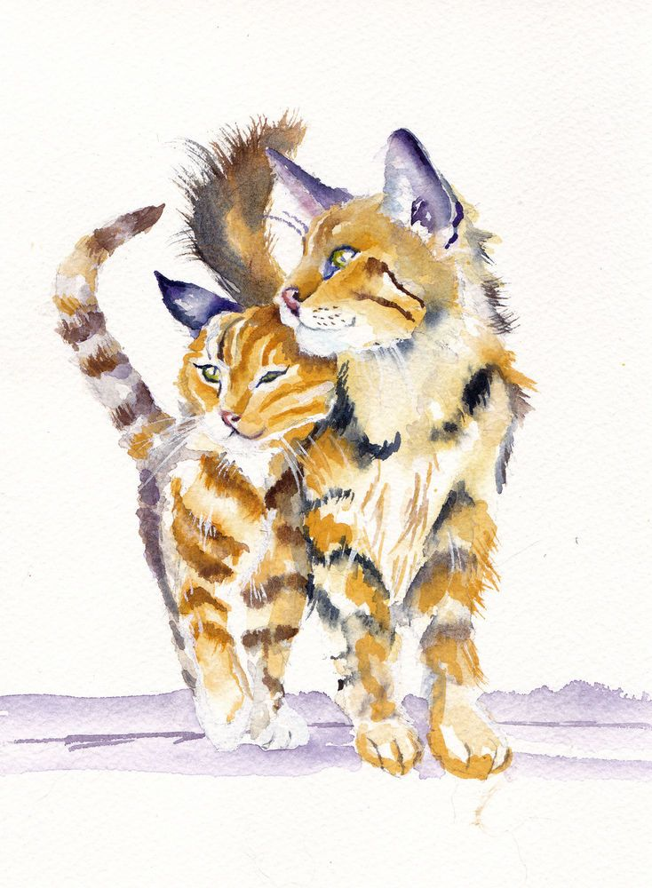 Cats Kittens Original Watercolour Painting 7x10 Greypepper