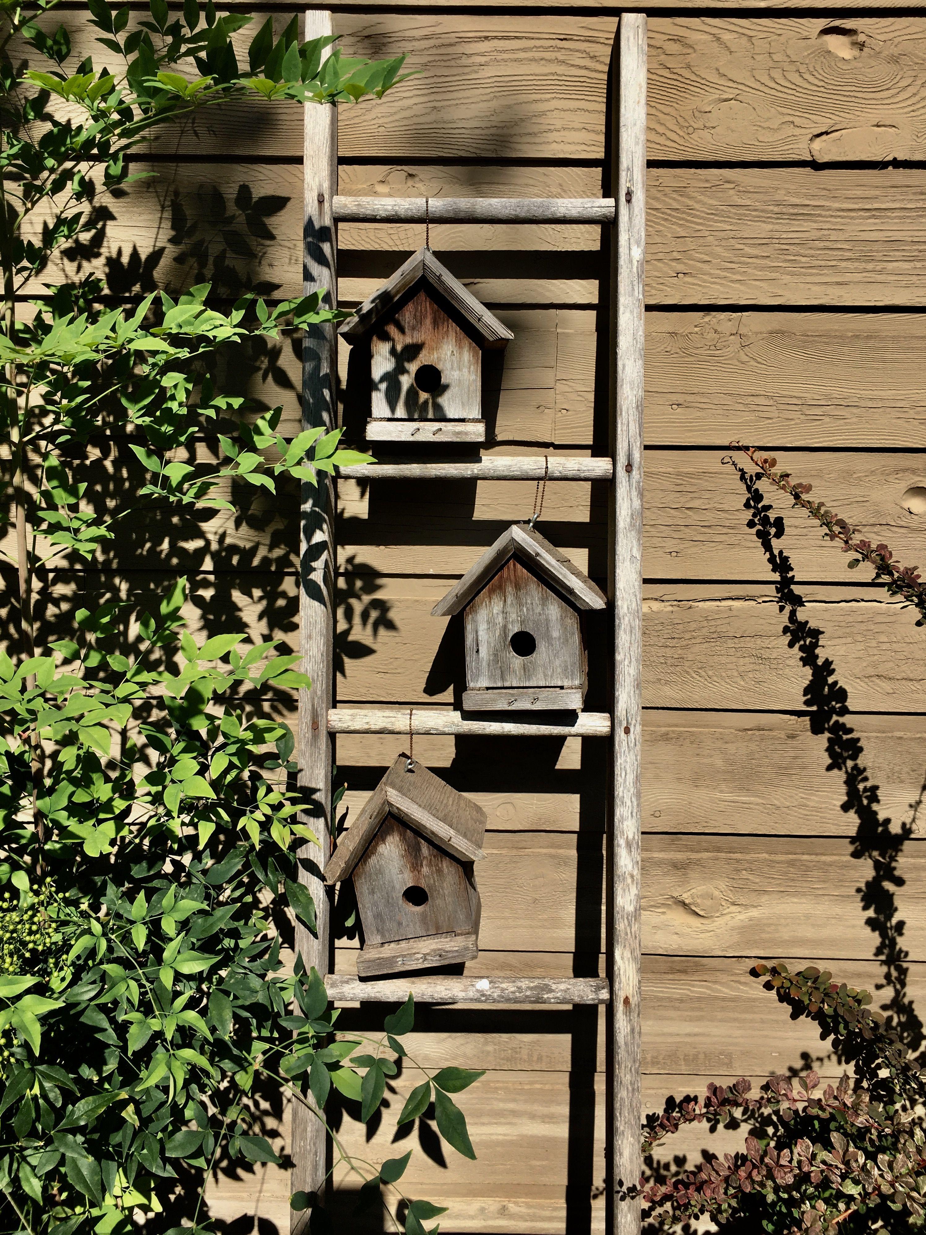 Anther Ladder birdhouse ladder! elaine - find anther wooden ladder, take