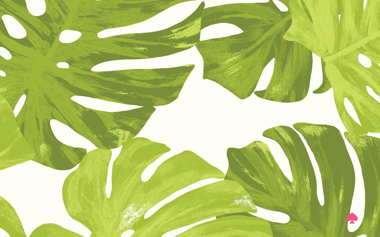 FREE palm leaf desktop background! Pc 壁紙、壁紙、ボタニカル柄