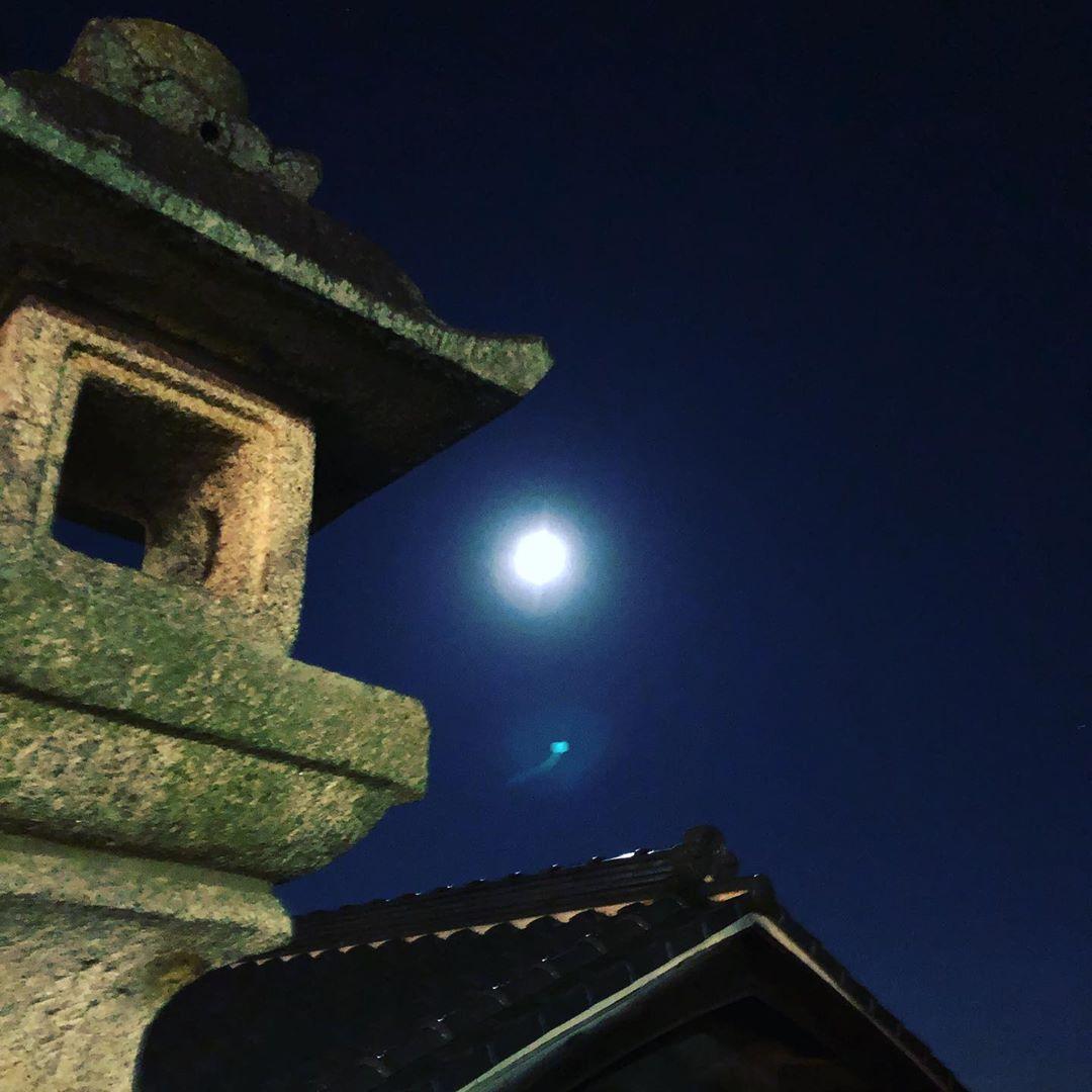 16 night moon