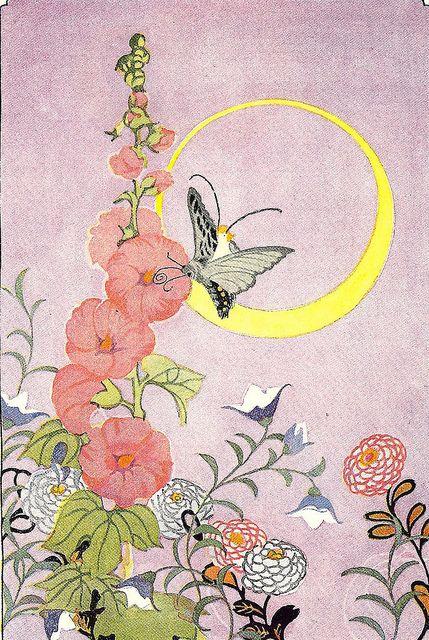 Humming-Bird Moth by cluttershop,
