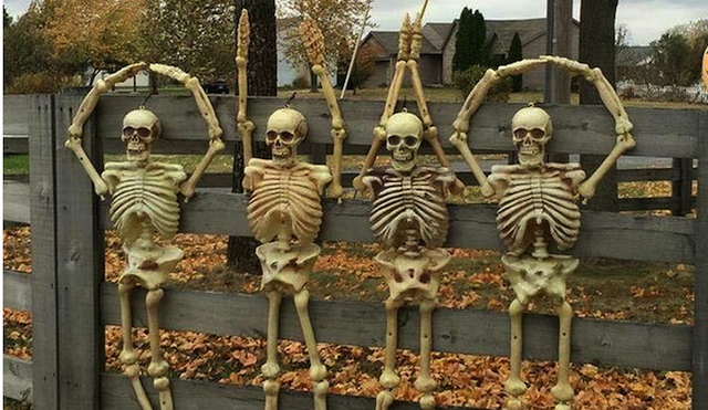 LOOK Ohio State fan makes skeletons spell 'OHIO' for
