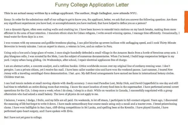 College App Essay  Teaching N What Not    College