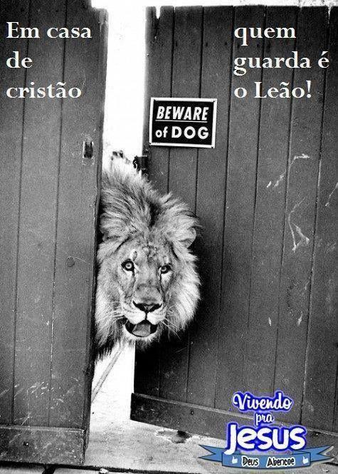 Ele é O Leão Da Tribo De Judá Frases E Citações Que Eu Gosto