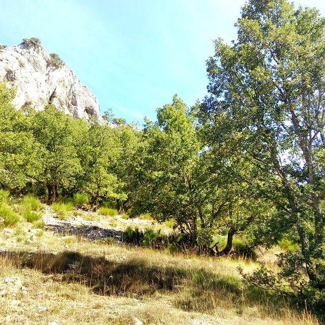 Montaña leonesa. #León