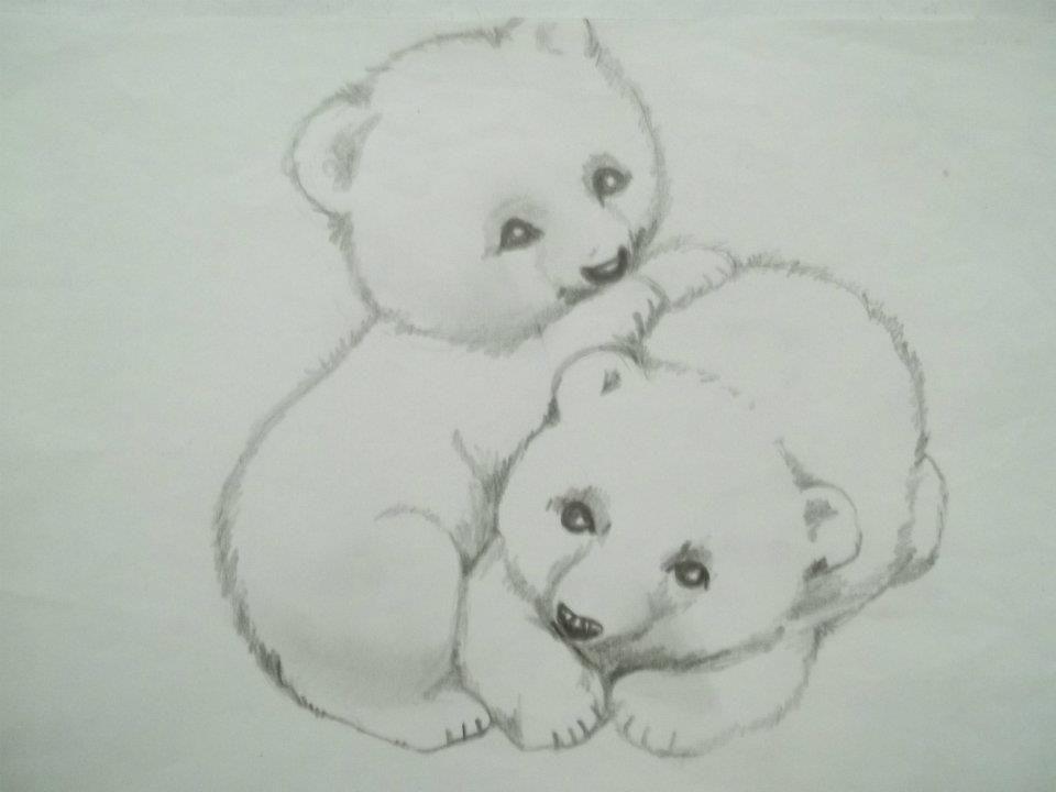 Osos Dibujo A Lapiz Carina Malarchia Bear Lapiz Teddy Bear