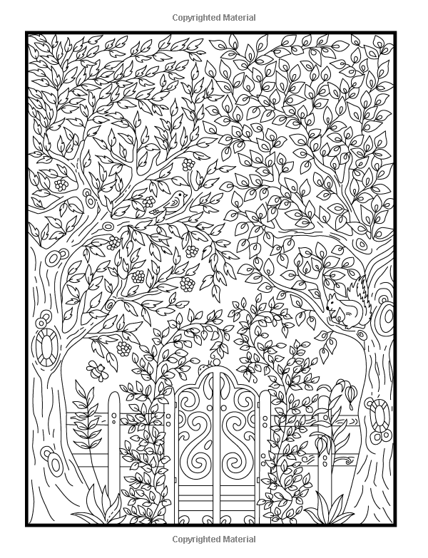 Hidden garden an adult coloring book with Amazon coloring books for adults secret garden