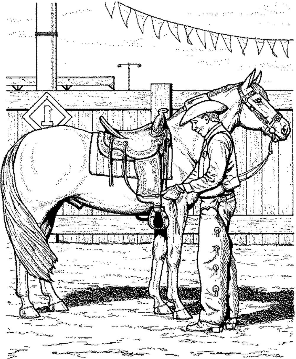 arabian horse coloring page - Google Search | my collections ...
