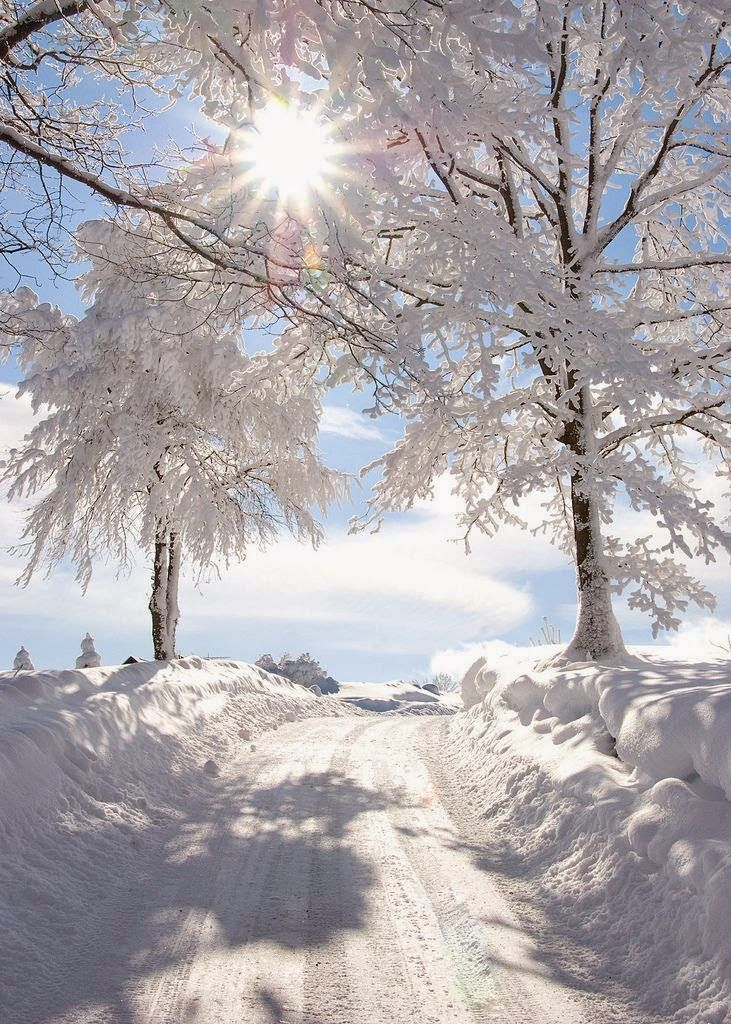 beautiful snowy sunburst   WINTER so zauberhaft   Pinterest   Natur ...
