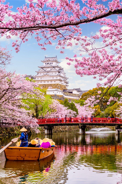 Japon Pays Du Soleil Levant : japon, soleil, levant, Tokyo, Circuit, Japon, Voyage, Japon,, Château, Japonais