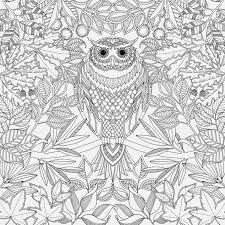 Resultado De Imagem Para Livros Para Colorir Download Pdf Jardim