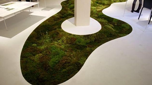 cool Grow a Moss Carpet Inside Your Very Home