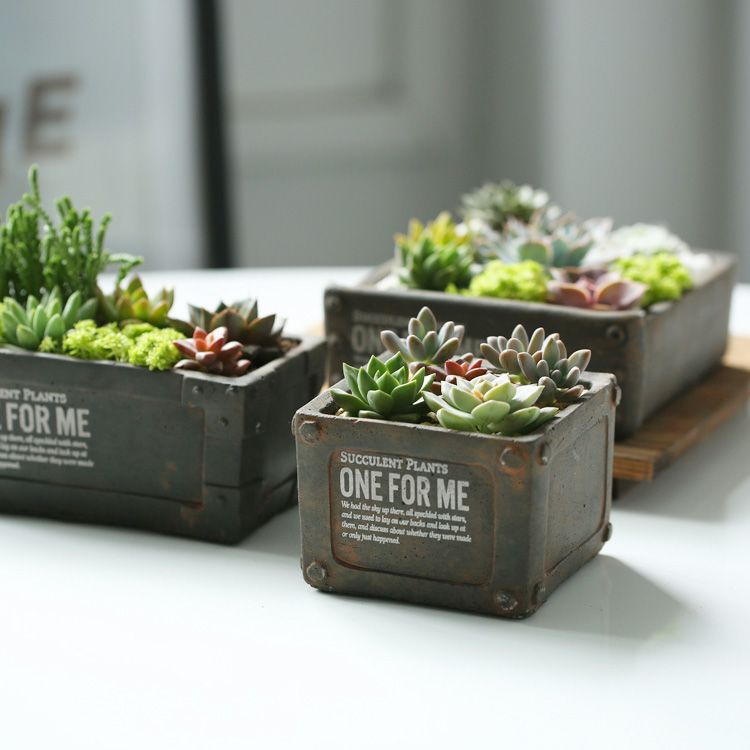 Aliexpress Com Acheter Bureau Mini Pots De Fleurs En Ceramique