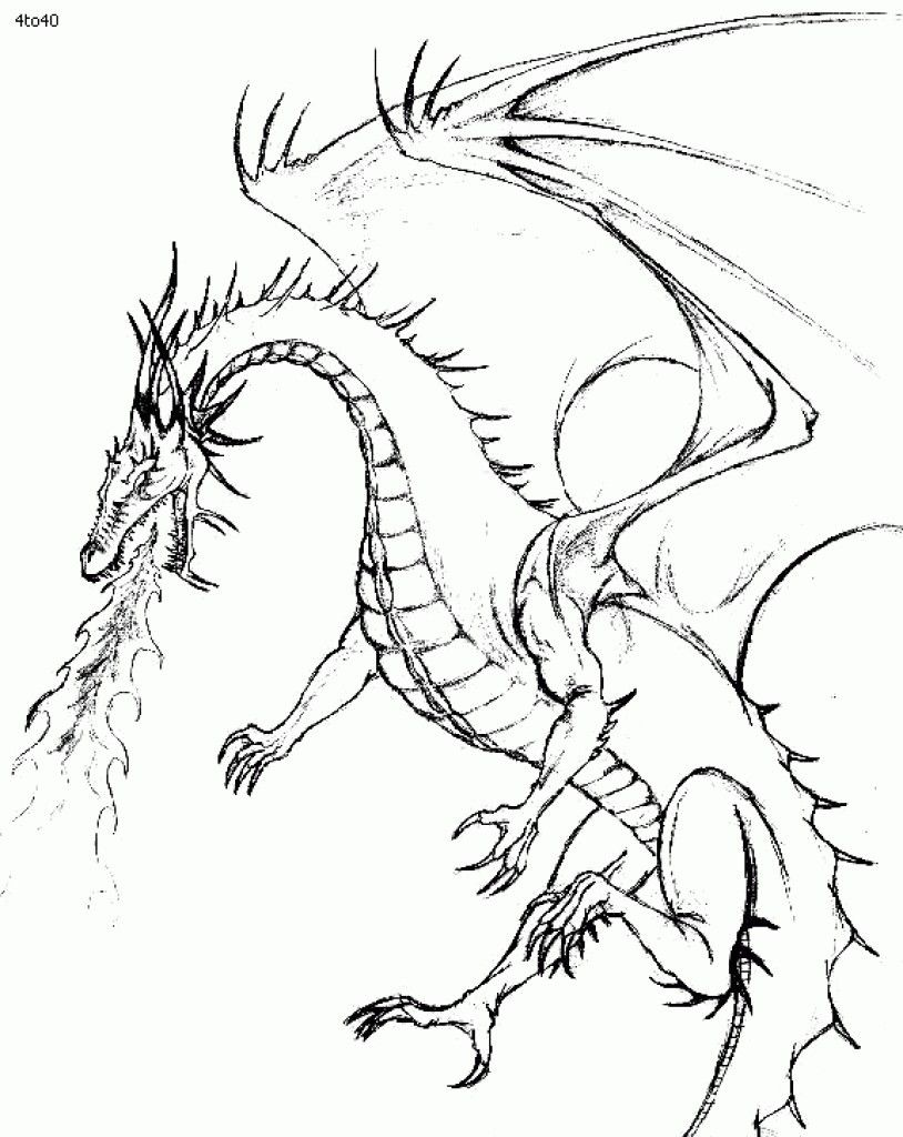 Fire Breathing Dragon Coloring Page Youngandtae Com Dragon Coloring Page Fire Breathing Dragon Dragon Sketch