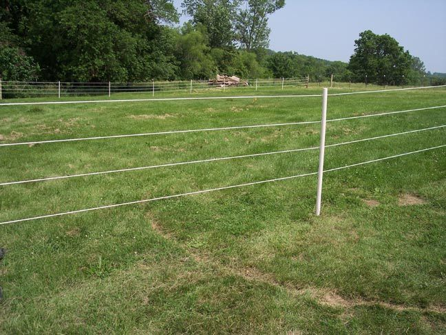 Diy Horse Fencing For 2 3 Acres In A