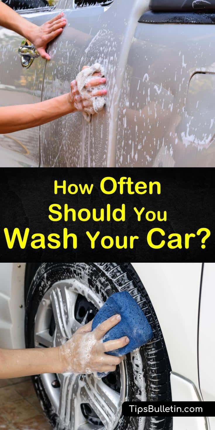 How Often Should You Really Wash Your Car? | Car wash soap ...